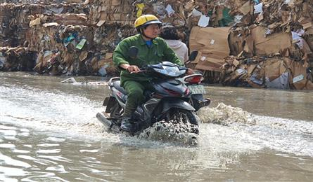 Bac Ninh firms fined for environmental violations