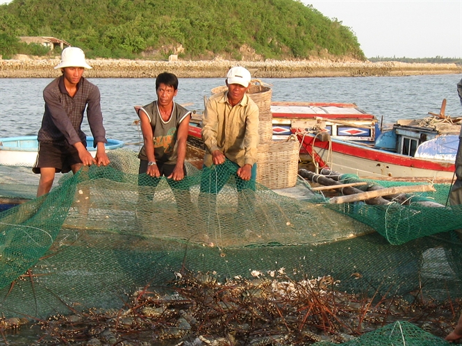 Vietnam Fisheries Association opposes mud dumping for power project