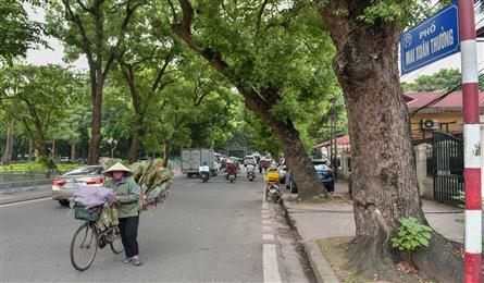 Hanoi's super-short streets explored