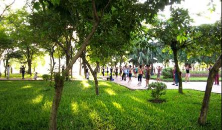 Prime Minister pledges more green space in Hanoi