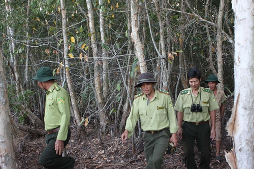 Data on forests to be collected