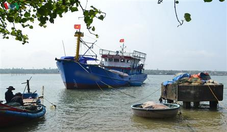 Quang Tri fishermen to be sued for bad debts