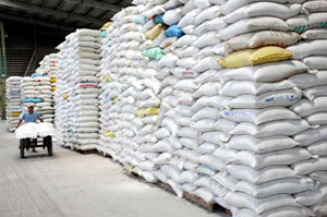 Rice exports poised to set new record this year