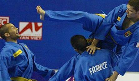 Vovinam officials oversee European champs