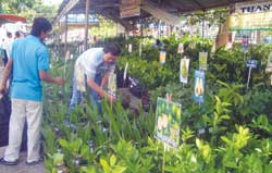 Agricultural expo spotlights safe produce