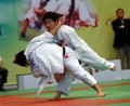 53 foreigners to take part in int'l judo tourney in Hanoi