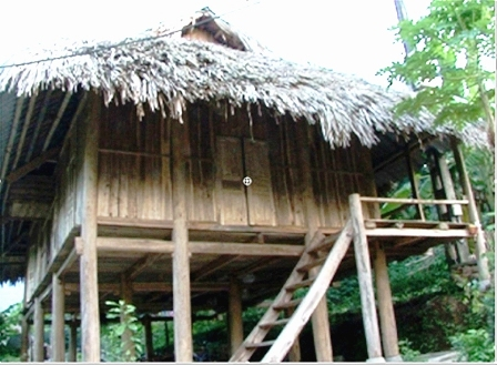 Stilt houses living monuments to Muong culture DTiNews
