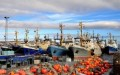 Oil majors look to Barents Sea for the future