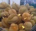 For the love of durian