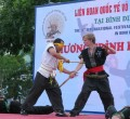 Vietnamese martial arts finds way into foreign hearts