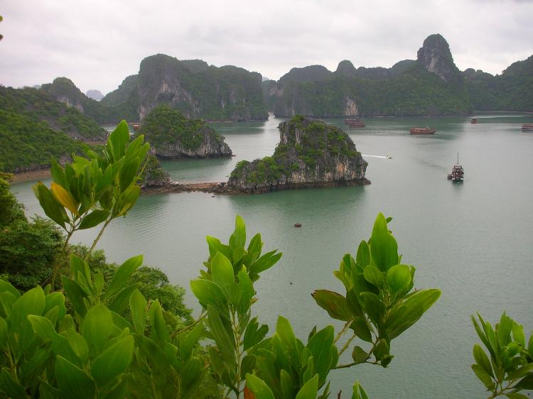 Discovering the flavor and beauty of Vietnam's UNESCO sites