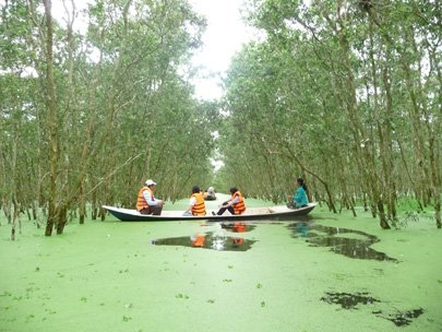 Tra Su Cajuput Forest is a must in flooding season