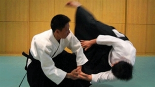 Five countries attend Hanoi International Aikido Festival