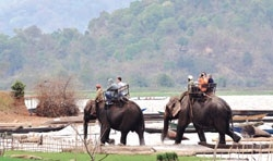Foreign tourist numbers up 18.4%